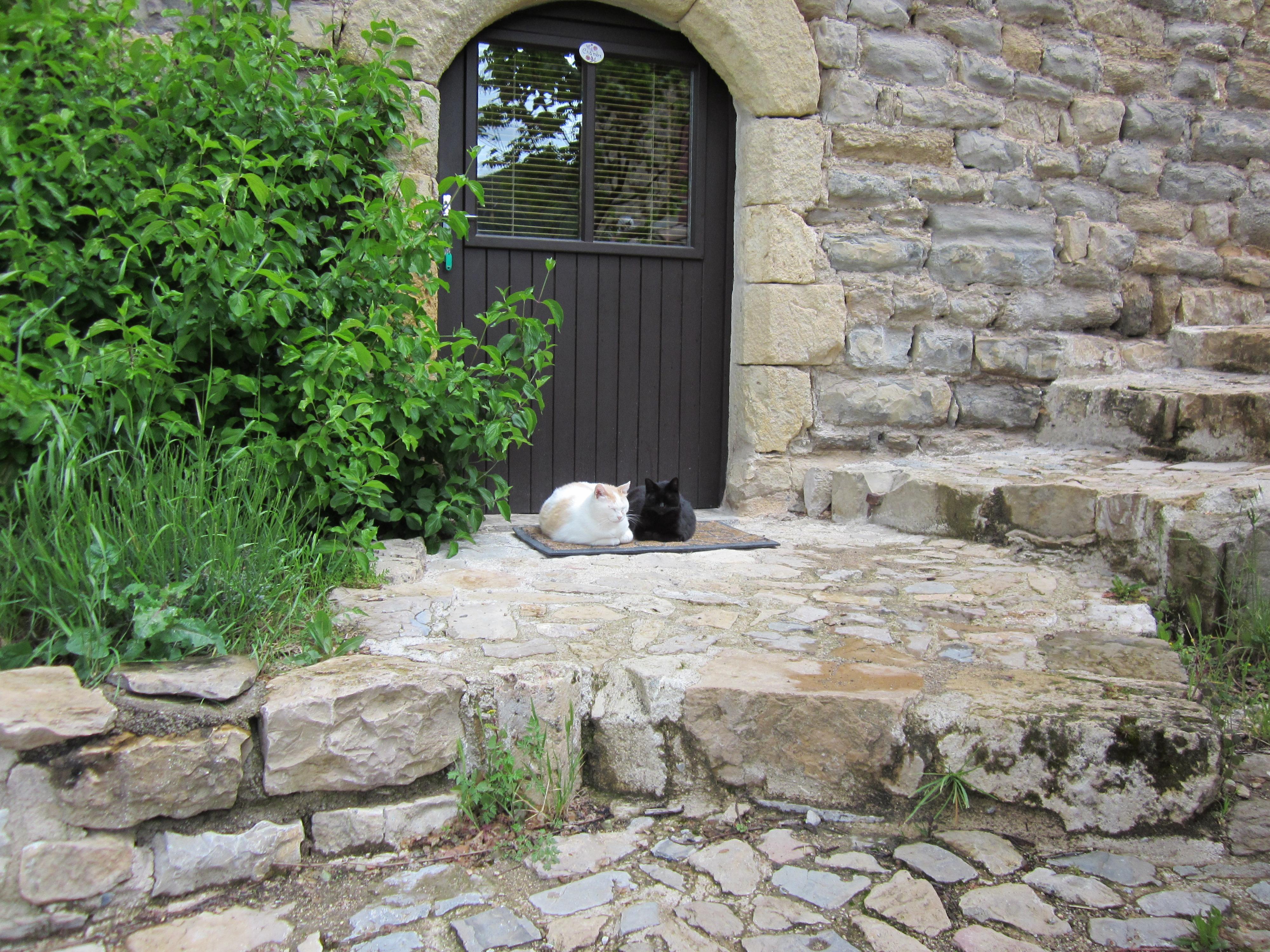 Gîte dans le Sud Aveyron