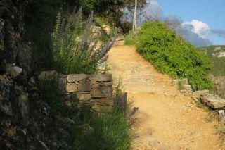 Le chemin d'accès au gîte