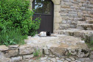Chambres d'hôtes dans le Sud Aveyron